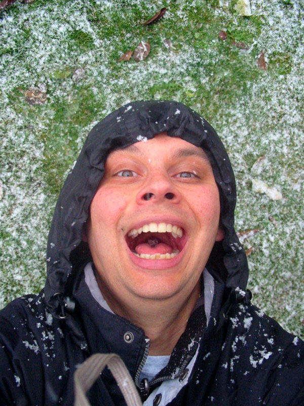 snowflakefairysm.jpg